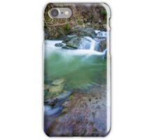 Roaring Meg iPhone Case/Skin