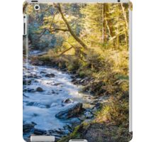 Afternoon Delight in Paradise iPad Case/Skin