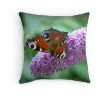 Tagpfauenauge auf Flieder Throw Pillow