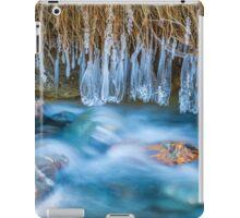 Ice Forms iPad Case/Skin