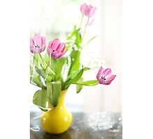 Pink Tulips In Yellow Vase Photographic Print