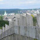 Hill Top Fence by Martha Medford