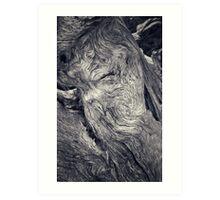 nova scotia #35 Art Print