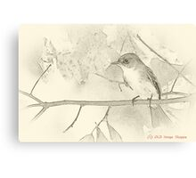 Flycatcher sumi-e Canvas Print