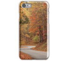 Autumn Road iPhone Case/Skin