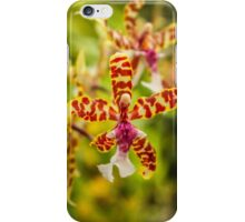 Orchid #1 iPhone Case/Skin