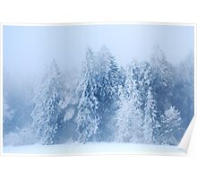 A snowy and foggy Day Poster