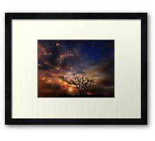 4290 Framed Print
