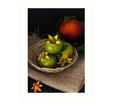 Green pomegranate in basket  Art Print