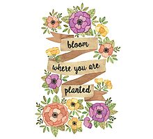 Bloom Where you are Planted Photographic Print