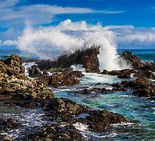 Hawaiian Coast by Radek Hofman