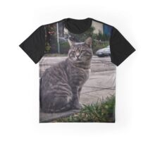 Greystoke King of Cats Graphic T-Shirt