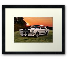 1966 Ford Mustang G.T.350 Coupe Framed Print
