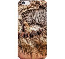 Mushroom HDR iPhone Case/Skin