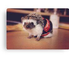 Bacon Hedgehog Canvas Print