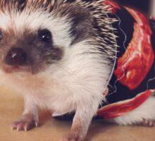 Bacon Hedgehog Sticker