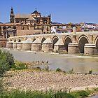 Puente Romano -  Cordoba - Andalucia - Spain by TonyCrehan