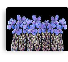 Perfect Pastels - Eremophila Veronica Canvas Print