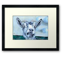 Wild Goat - Nature Photography Framed Print