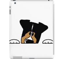 Miniature Australian Shepherd peeking black tri iPad Case/Skin