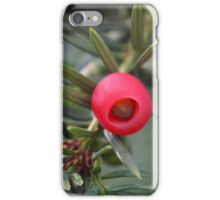 A cone of a yew (Taxus baccata) iPhone Case/Skin