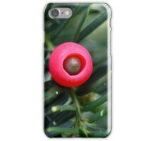 Cone of a yew (Taxus baccata) iPhone Case/Skin