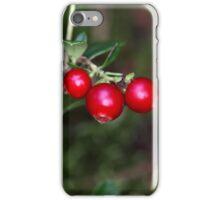 Berries of a wild lingonberry (Vaccinium vitis-idea) iPhone Case/Skin
