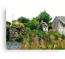 Another abandoned cottage - Donegal, Ireland Canvas Print