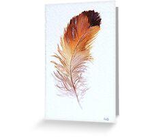 Feather Study II Greeting Card