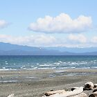 Qualicum Beach  by AnnDixon