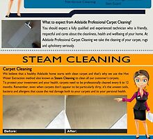 Carpet steam cleaning Adelaide by carpetdrycleani