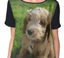Flower Crown Puppy Chiffon Top