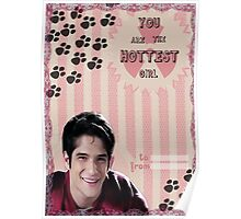 My Teenwolfed Valentine[You Are The Hottest Girl] Poster