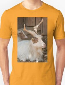 moose at the zoo Unisex T-Shirt
