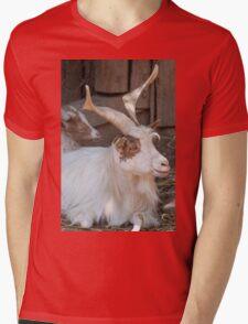 moose at the zoo Mens V-Neck T-Shirt