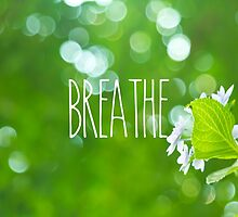 Breathe Refreshing Hydrangea with Green Leaves and Bokeh by Beverly Claire Kaiya