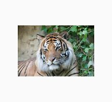 tiger at the zoo Unisex T-Shirt