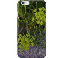 Rock Samphire, Inishmore, Aran Islands iPhone Case/Skin