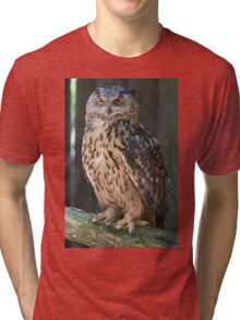 owl in the mountains Tri-blend T-Shirt