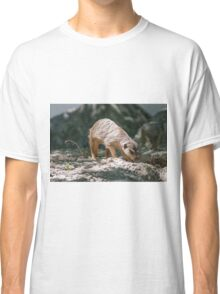 lemur at the zoo Classic T-Shirt