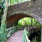 A Bridge of Interest  by hootonles