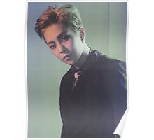 Exo Xiumin/Kim Minseok Lotto (in green) Poster