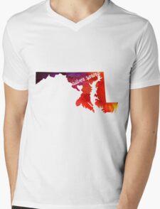 Silver Spring Mens V-Neck T-Shirt