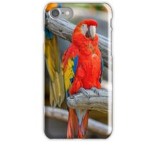 parrot on its perch iPhone Case/Skin