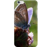 Little Blue Butterfly iPhone Case/Skin