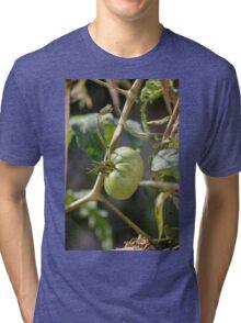 green tomatoes in garden Tri-blend T-Shirt