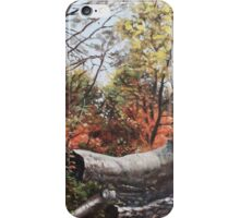 Fallen trees on Southampton Common during Autumn iPhone Case/Skin