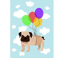 Pug in the sky Photographic Print