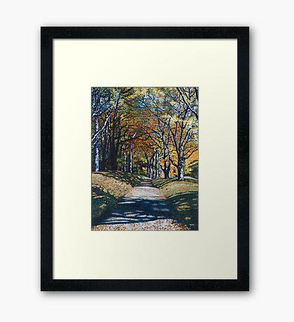 'Autumn Trail ( Bass Lake, Blowing Rock, NC)' Framed Print