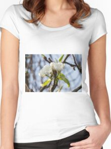 white flowers on trees Women's Fitted Scoop T-Shirt